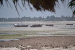 Tanzania300265