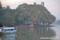 Lacul-Tana00004