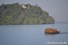 Lacul-Tana00031