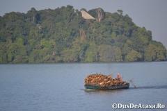 Lacul-Tana00033