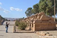 Luxor-East-Bank20