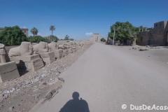 Luxor-East-Bank21