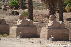 Luxor-East-Bank5