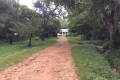 Tanzania00213