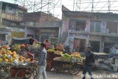 India01125