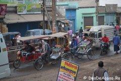 India01533