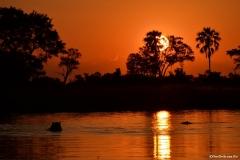 Okavango00004