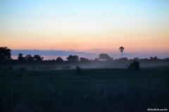 Okavango00055