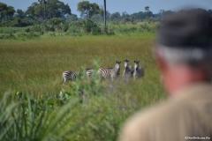 Okavango00478
