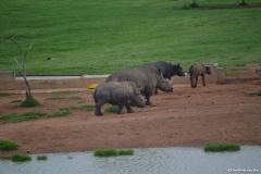 AfricaS00595