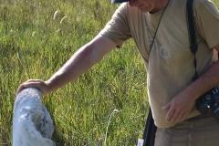 Okavango00198