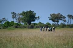 Okavango00312