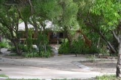 BotswanaM00110