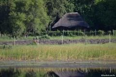 Okavango00174