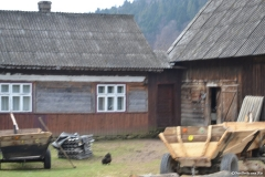 Transilvanica00139