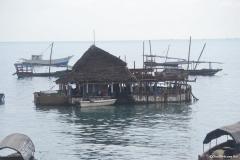 Zanzibar00081