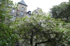 Edinburgh00411