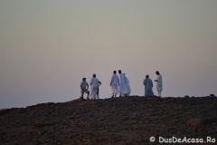 wadi11