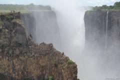Zambia00214
