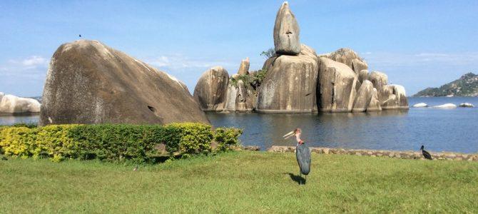 Bukoba și Bolovanii Dansatori din Mwanza (Tanzania 1)